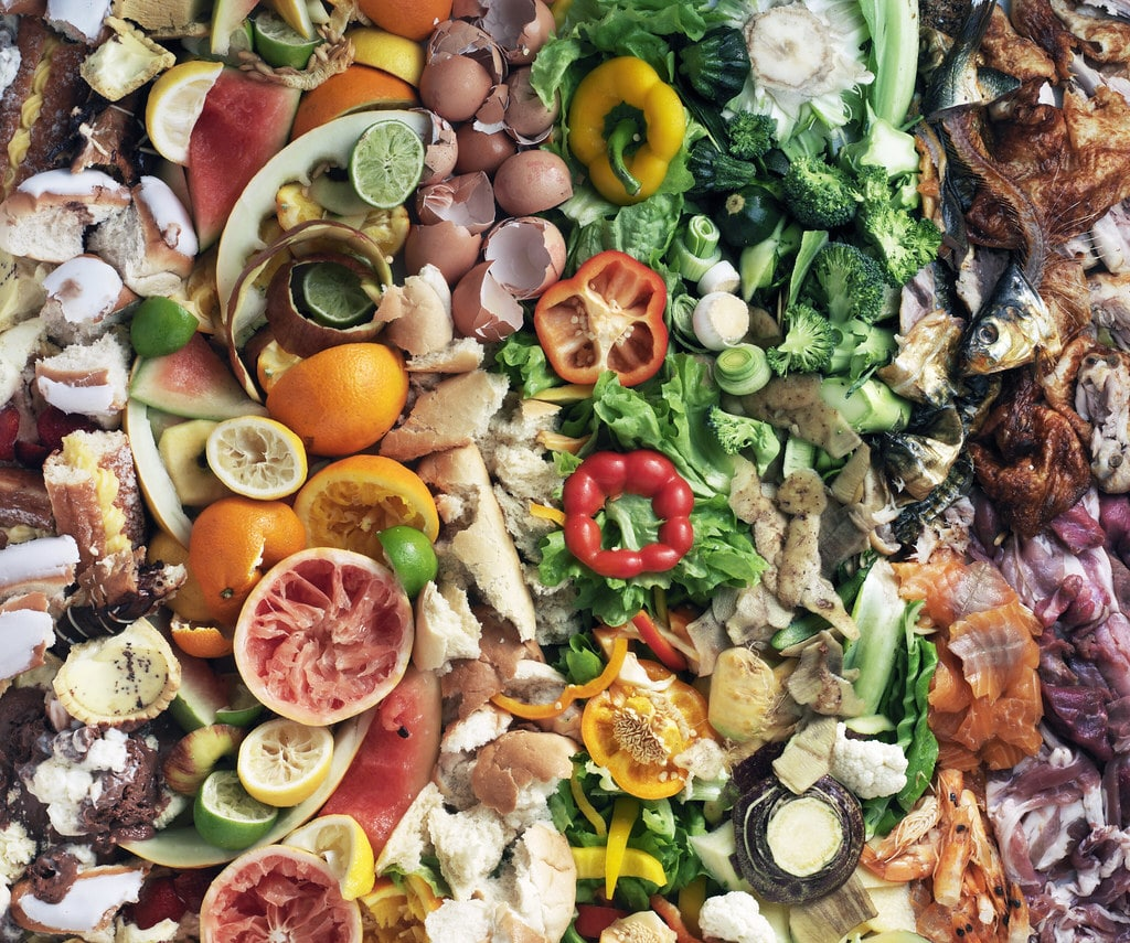 Why we need to tackle food waste and what social enterprises are doing about it